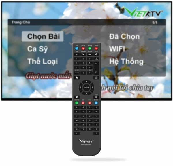 remote-dau-vietktv-hd-plus