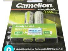 pin-sac-camelion-2500